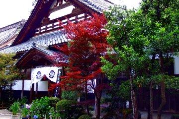 Красота храма Дайандзэндзи в Фукуи