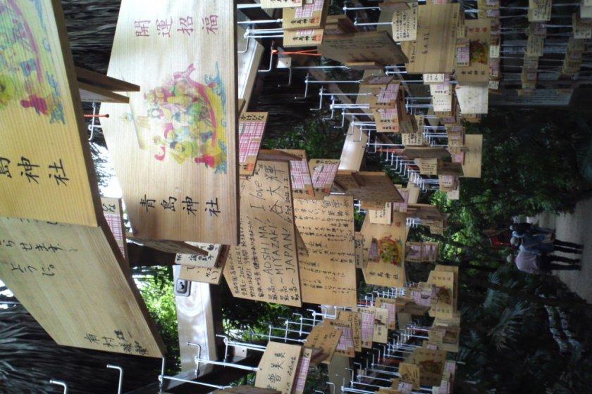 Making a wish (Aoshima Shrine)