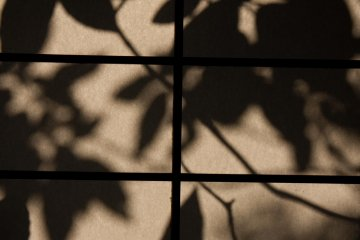 <p>The evening sun created beautiful shadows of the leaves outside onto the paper screen.</p>