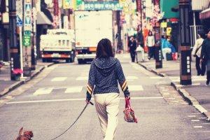 """Sugamo - The """"Old Lady's Harajuku"""""""