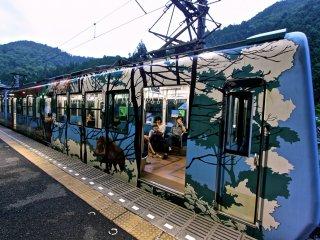 รถไฟสาย Eizan Electric Railway ขบวนสีสดใสที่มุ่งหน้าสู่สถานี Kurama