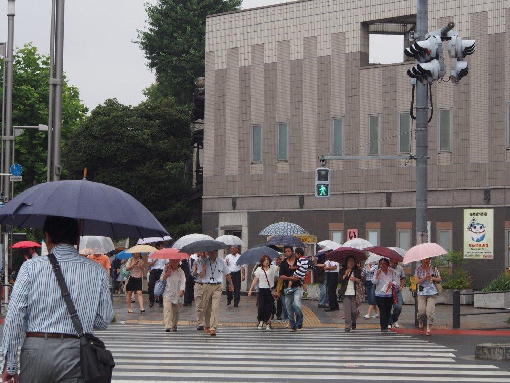 Токио утопает в море зонтов, даже если слегка моросит