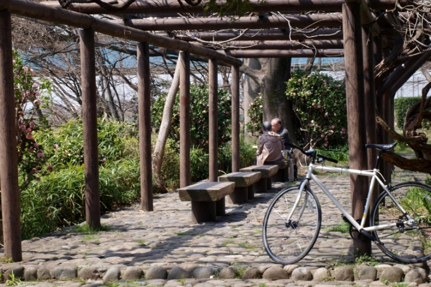 Shady break spot for summertime cycling