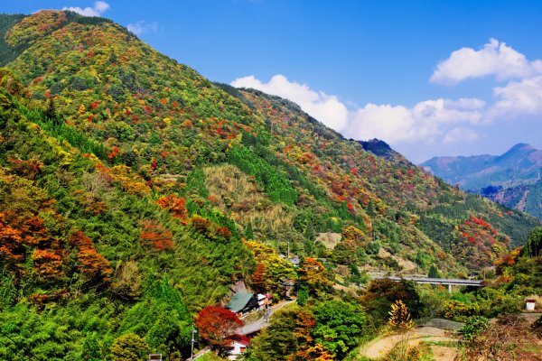 Multiple colors of the Gokase Mountains