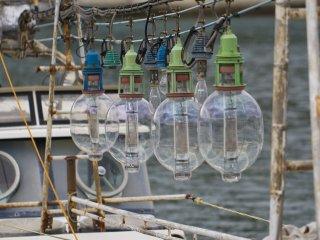 Nếu bạn xem kỹ những chiếc thuyền câu mực, bạn sẽ nhận thấy những bóng đèn được thiết kế theo nhiều hình dạng khác nhau