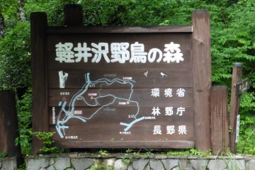 <p>Map at the entrance of the Wild Bird Forest</p>