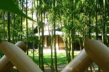 Tea rooms in Nakamura Park.