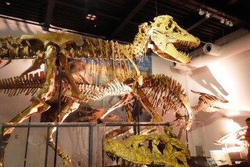 Mifune Dinosaur Museum