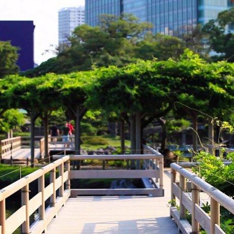 하마리큐 정원