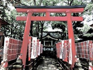 Torii gate at Toyokawa Inari Temple, Akasaka
