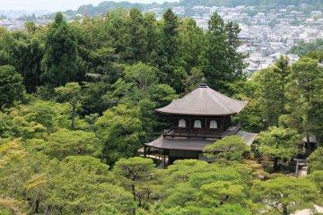 วัดกินคาคุจิ(Ginkakuji Temple)