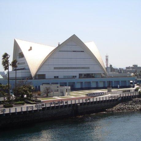 A Trip to Kagoshima City Aquarium