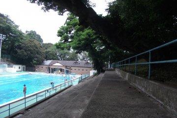 <p>Motomachi swimming pool, poolside view</p>