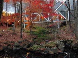 SeijiFujishiroGallery surrounded by beautiful autumn leaves