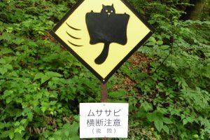 Attention: traversée d'écureuils volants.Ce panneaun'existe qu'endeux exemplairesdans le monde et ils se trouvent tous deux ici!