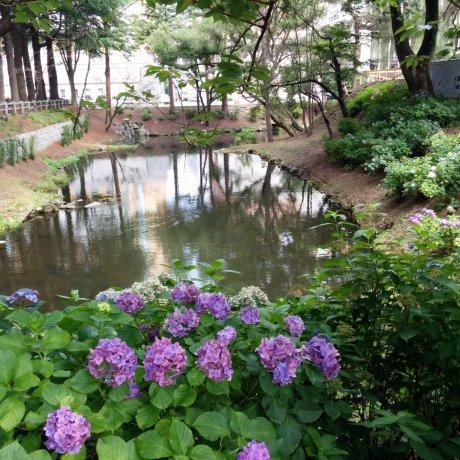 Thành cổ Morioka: dấu vết của lãnh chúa phong kiến