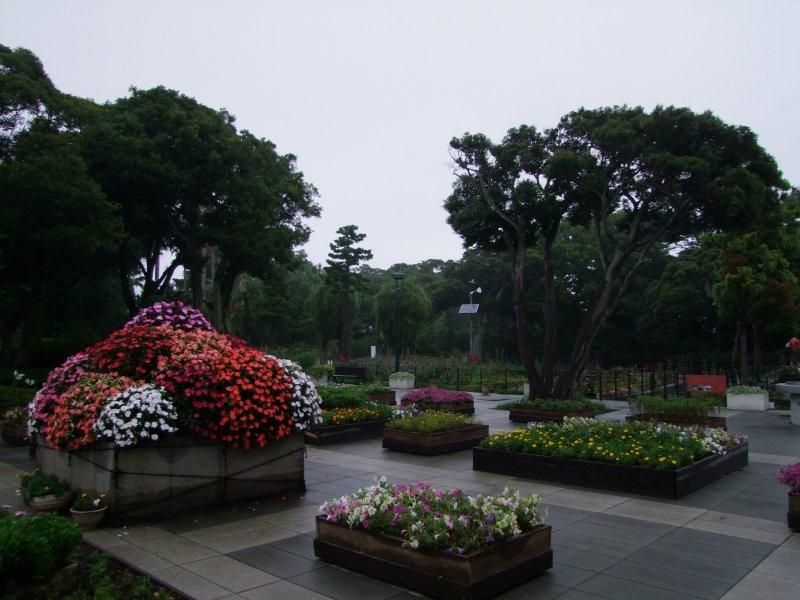 꽃으로 단장한 화단