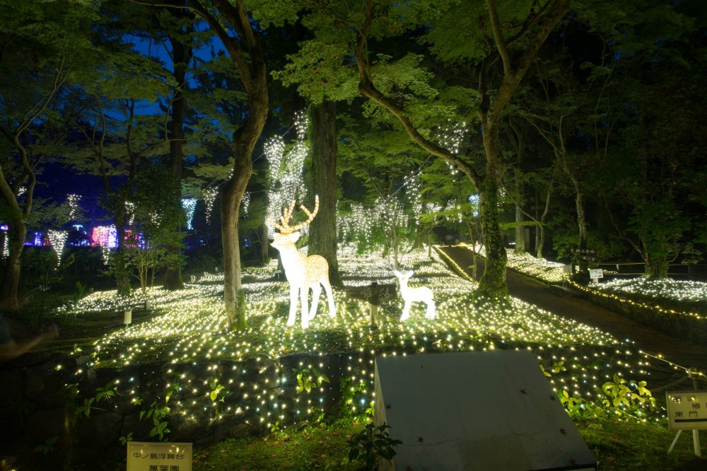 Illuminara: Manyo Botanical Garden - Nara - Japan Travel ...