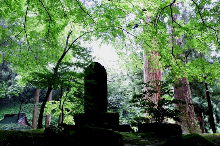 Khoảnh khắc yên bình tại đền Eiheiji 1