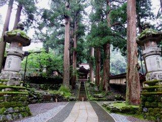 Divine view of Kara-mon Gate, stone lanterns and ancient cedar trees