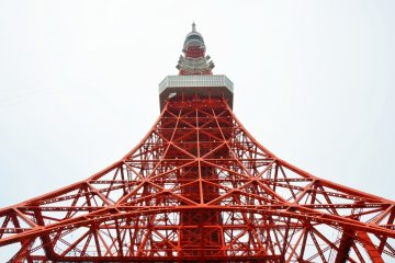 In Love With Tokyo Tower