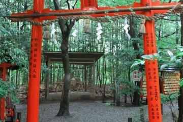 <p>野宫神社</p>