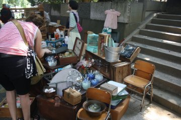 <p>Foraging for bargains</p>