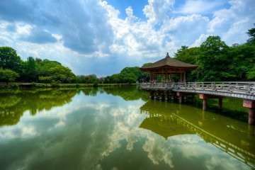 <p>As you move around, you will get to see this beautiful pond</p>