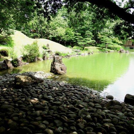 Passear no jardim Yokokan no verão
