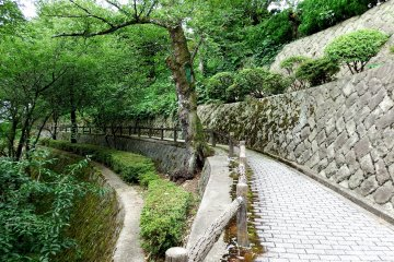 <p>There&#39;s a pretty walkaway surrounding the entire stone wall of Maruoka Castle. You can enjoy a leisurely stroll while appreciating the traditional beauty of the wooden castle and lush green of the park</p>