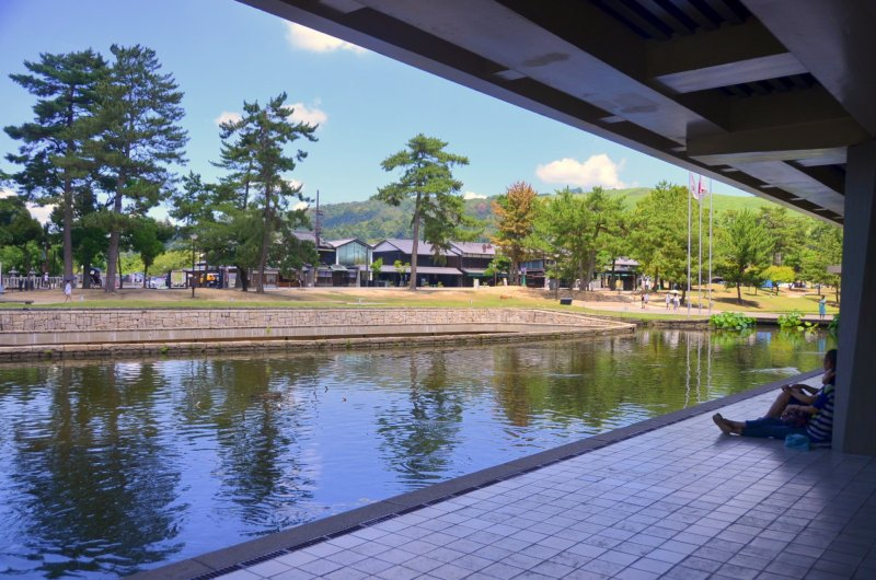 <p>View from&nbsp;Nara National Museum</p>