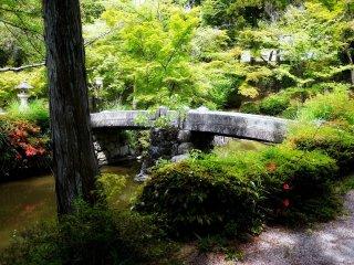 Cây cầu đứng vững trên những cột trụ