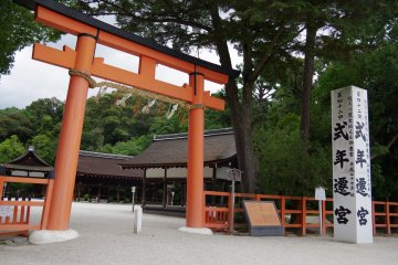 <p>After this second torii gate, the scene changes completely</p>