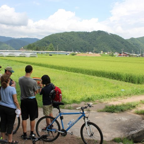 Ressentez la Vie Locale à Vélo
