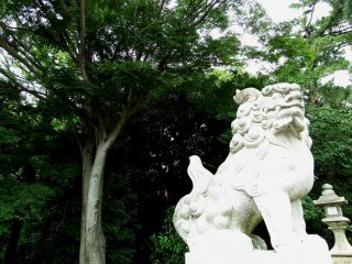 Stone statue of guardian lion with deep-green trees in the backdrop