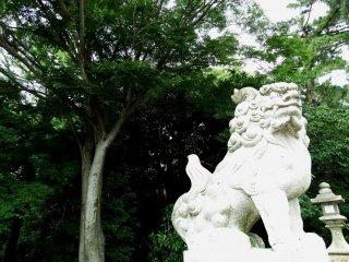 푸른 나무가 있는 수호 사자의 석상