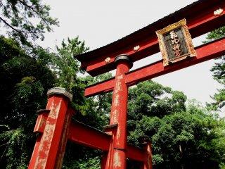 일본의 세 번째로 높은 목조인 케히진구의 오래된 목조 토리이는 중요한 문화재다