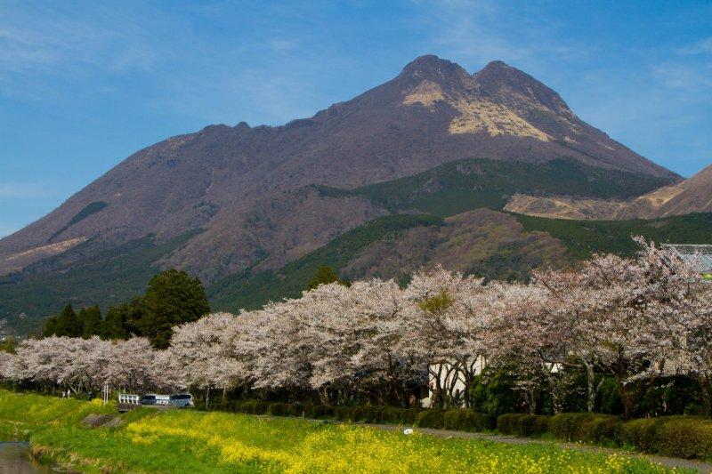 <p>두 개의 봉우리를 가진 산, 유후다케가 유후 시(일본어로는 &#39;유후인&#39;)의 작은 마을을 내려다보고 있다.</p>