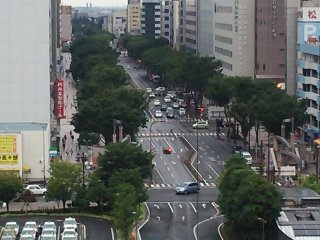 Miyagino Dori hay con đường Eagle, bắt đầu ở phía đông của Sendai và dẫn đến sân vận động bóng chày của Rakuten Golden Eagle