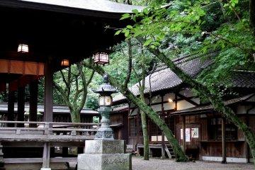 Kanegasaki Shrine in Tsuruga, Fukui