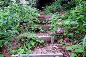 実際の城跡をこの目で見ようと、喜び勇んで狭い道を登ると・・・