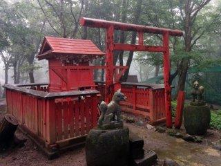 Un sanctuaire dédié à Inari. Les renards sont les messagers de la divinité Inari, donc si vous êtes gentils avec eux, de bonnes choses vous arriveront
