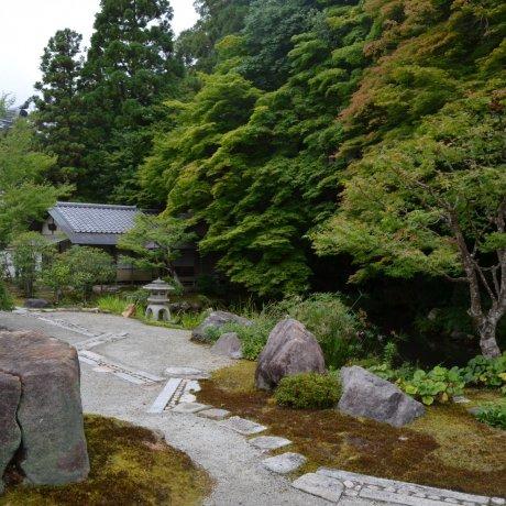 Hojo Gardenปรัชญาแห่งเซนทางธรรมชาติ