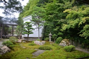 สวนเซนที่เต็มไปด้วยพืชพรรณธรรมชาติ