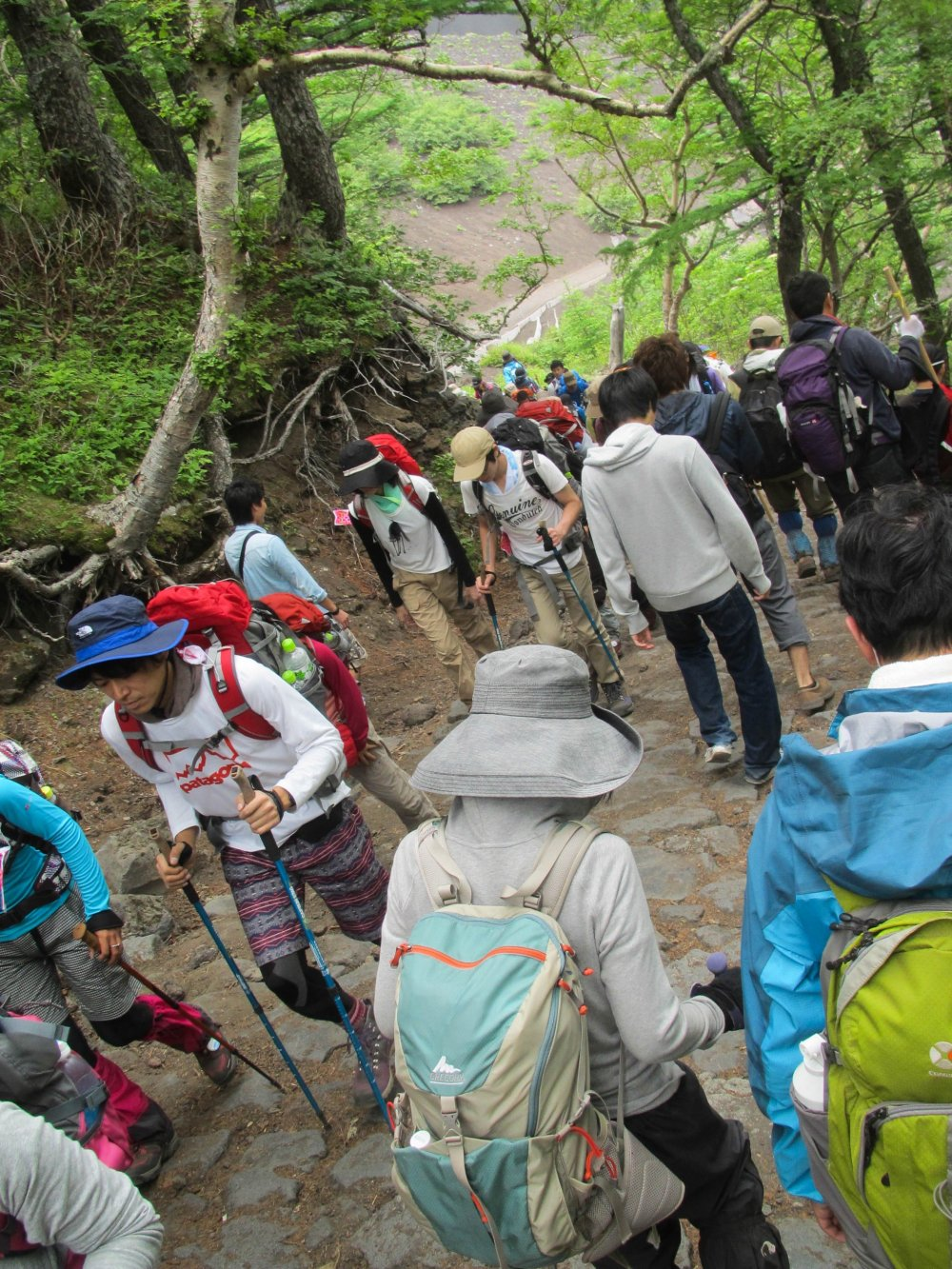 Many people hike up Mount Fuji each year.