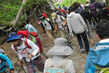 <p>Many people hike up Mount Fuji each year.</p>