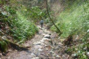 Along the Biwa trail