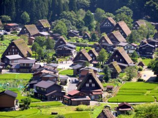 Gassho-zukuri (a traditional building style) farmhouses in Shirakawago.