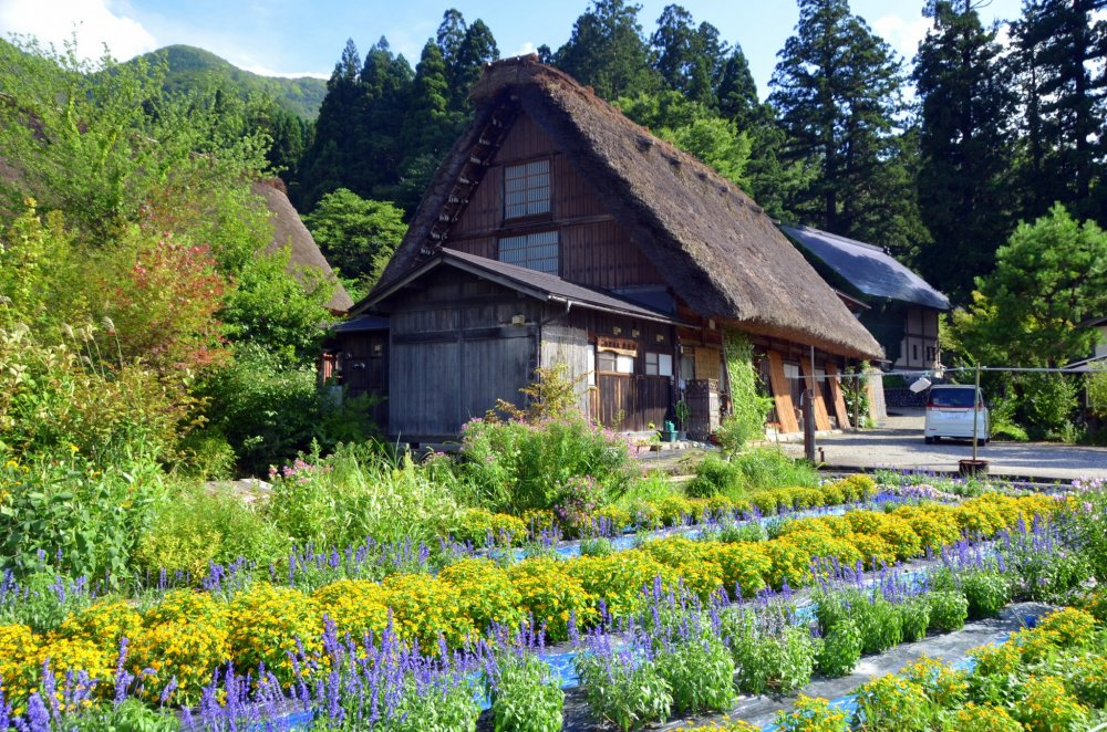 Flowers bloom and enhance the landscape beauty of this quaint village.