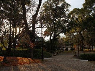 The temple grounds illuminated by the setting sun